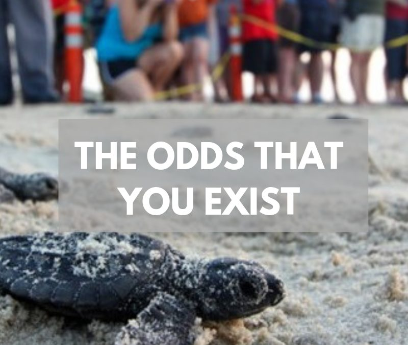 The Odds That You Exist